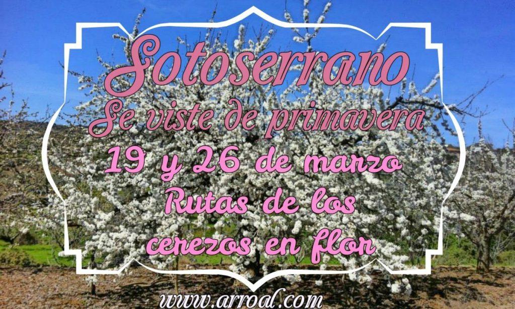 Cerezos en flor Sotoserrano