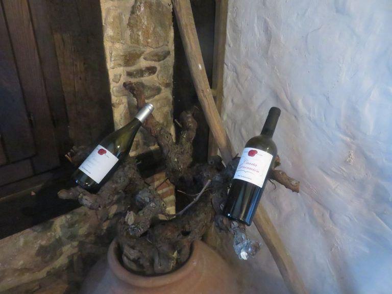 vinos cuarta generación