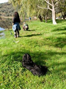 pescar en ríos con niños