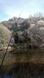 pescar en los ríos de Sotoserrano
