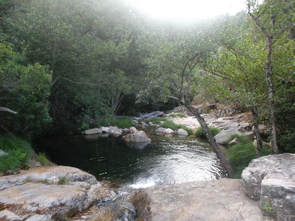 bañarse en la naturaleza