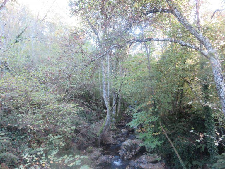 ruta camino del agua mogarraz