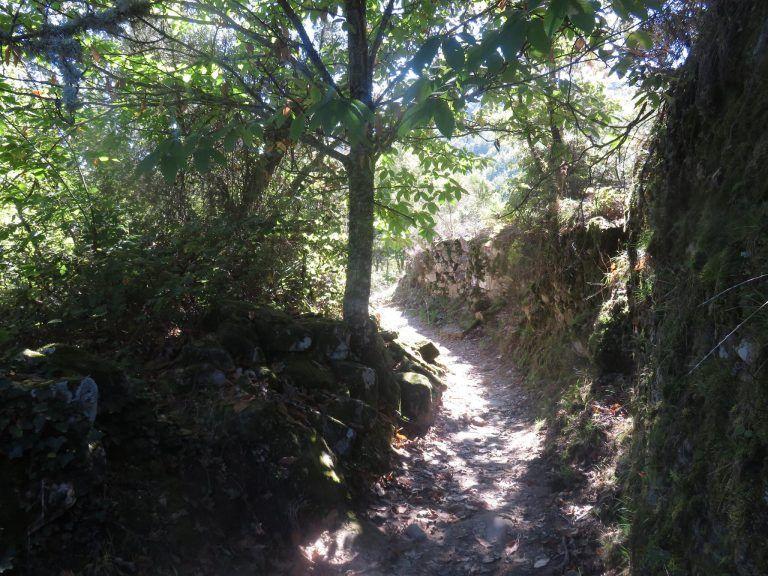 ruta senderista camino del agua