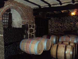 bodegas cuarta generacion vinos