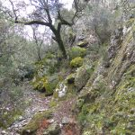 Sierra de Francia Salamanca